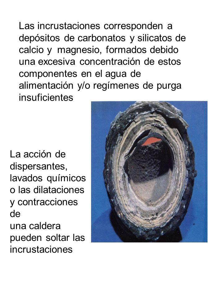 Las incrustaciones corresponden a depósitos de carbonatos y silicatos de calcio y magnesio, formados debido una excesiva concentración de estos compon
