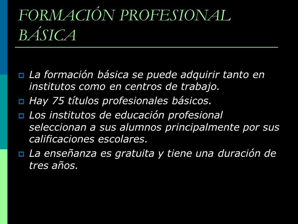 FORMACIÓN PROFESIONAL BÁSICA La formación básica se puede adquirir tanto en institutos como en centros de trabajo. Hay 75 títulos profesionales básico