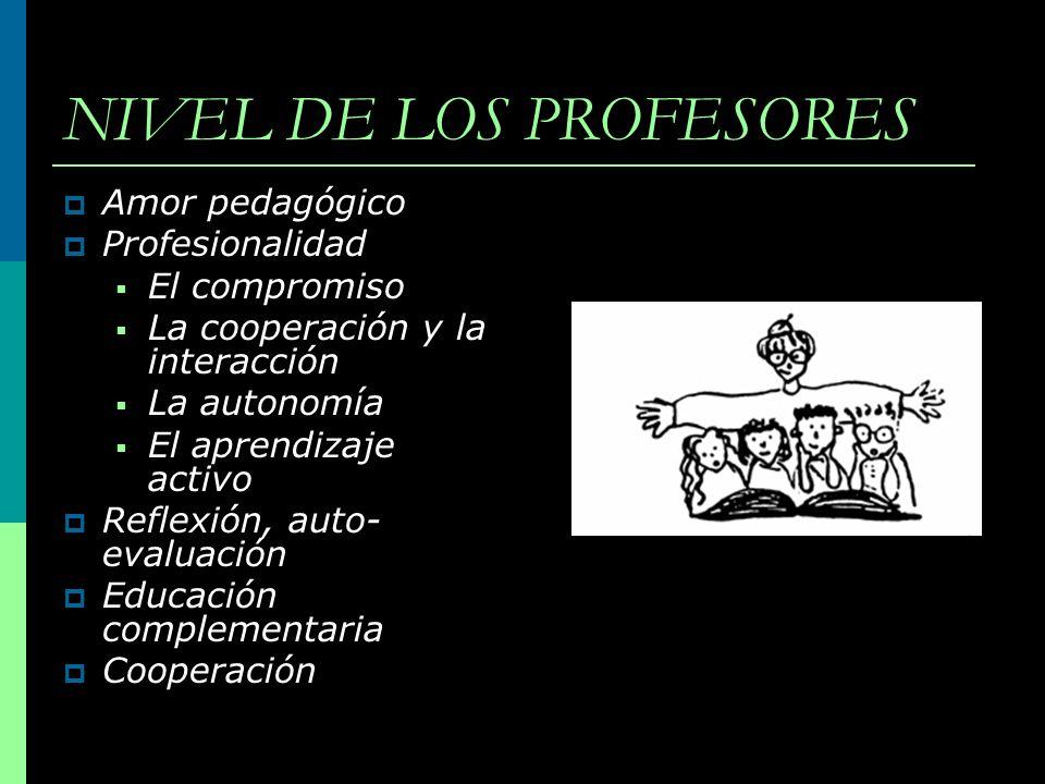 NIVEL DE LOS PROFESORES Amor pedagógico Profesionalidad El compromiso La cooperación y la interacción La autonomía El aprendizaje activo Reflexión, au