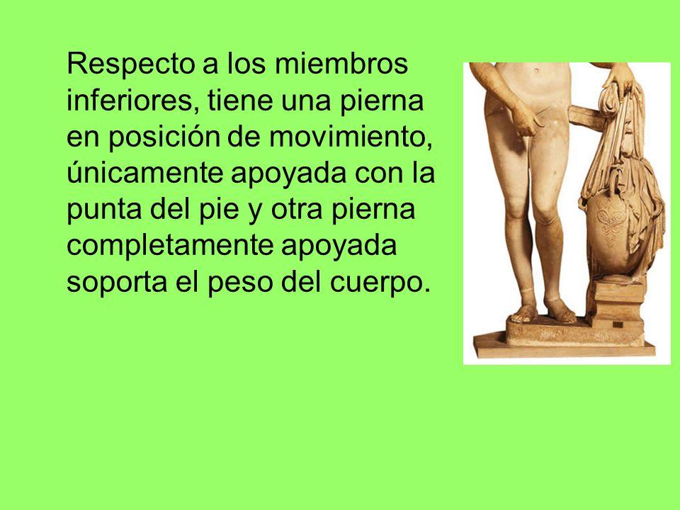 Respecto a los miembros inferiores, tiene una pierna en posición de movimiento, únicamente apoyada con la punta del pie y otra pierna completamente ap