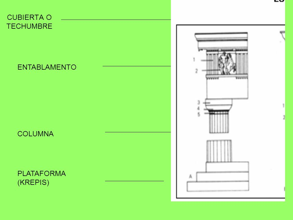 En ellos se distinguen tres partes: El koilon (5) (lo que los romanos llamaron cavea).