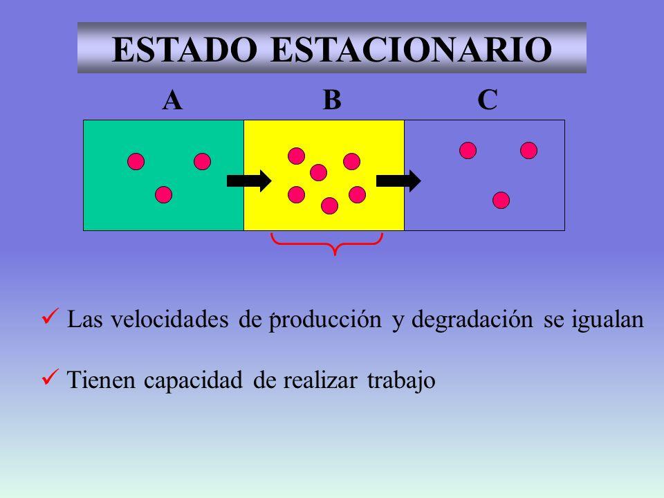 ENERGÍA UTILIZACIÓN INCORPORACIÓN DEGRADACIÓN