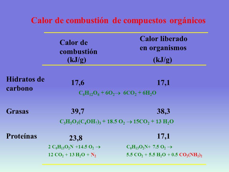 UTILIZACION DE LA ENERGIA METABOLISMO BASAL TRABAJO MECANICO CALOR DE COMBUSTION DE ALIMENTOS