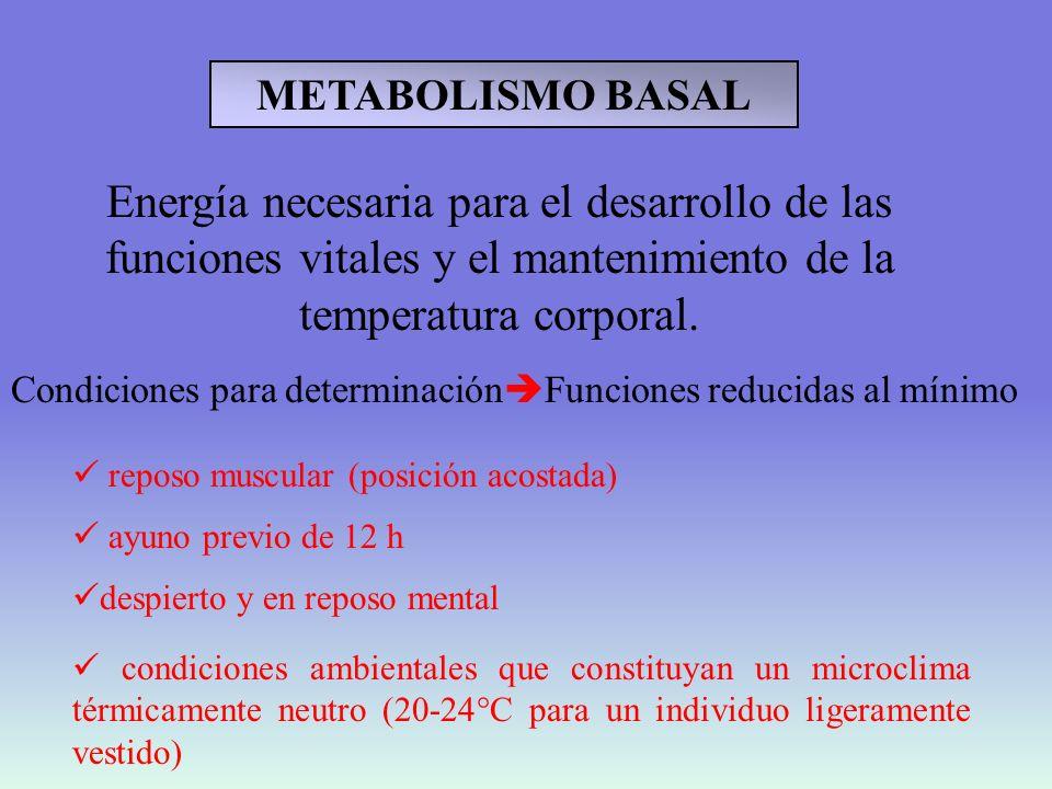 Producción de calor basal de diversas especies animales en relación a su peso corporal elefante caballo ratón paloma rata conejo ganso perro hombre