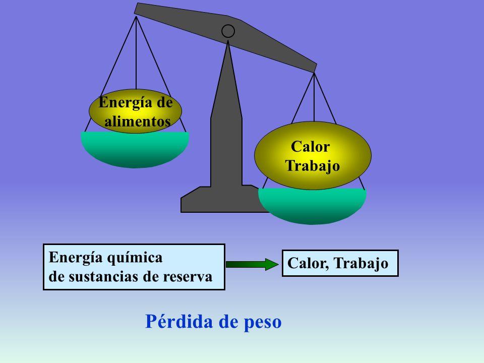 Segunda Ley de la Termodinámica Todo proceso espontáneo resulta en un incremento neto de entropía, o desorden, del sistema más sus alrededores S= función entropía dS = dq/T Su = Ss + Salr