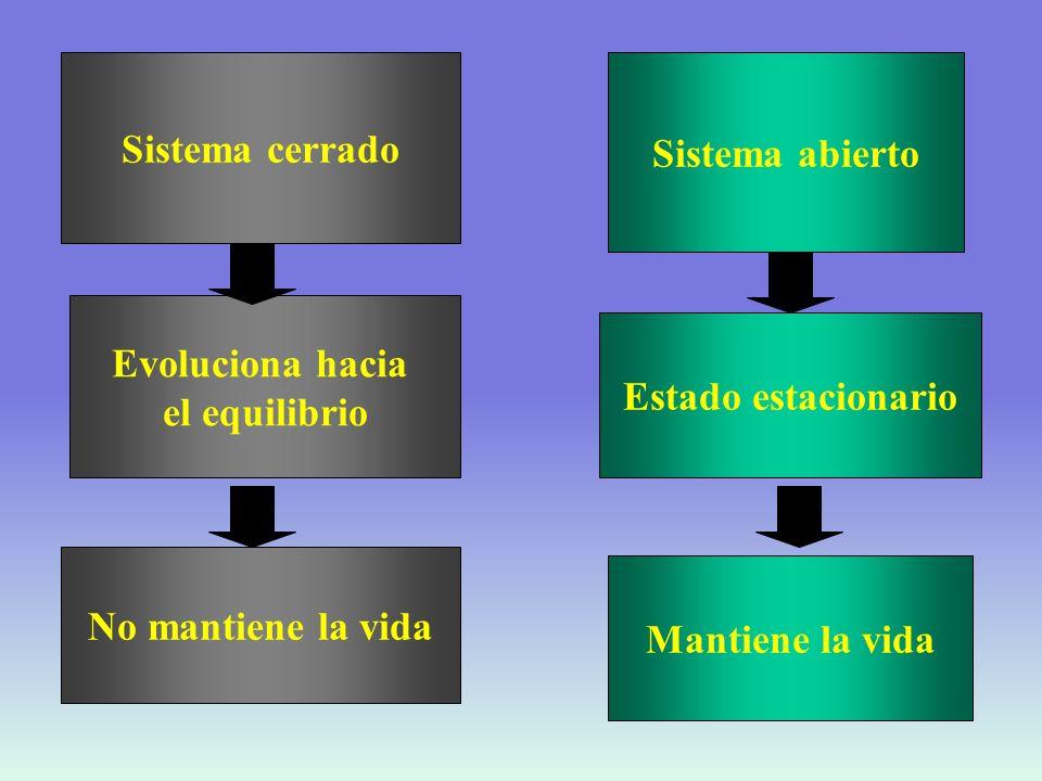 REACCIONES DE DEGRADACIÓN REACCIONES DE SÍNTESIS ANABÓLICAS REQUIEREN ENERGÍA CATABÓLICAS LIBERAN ENERGÍA