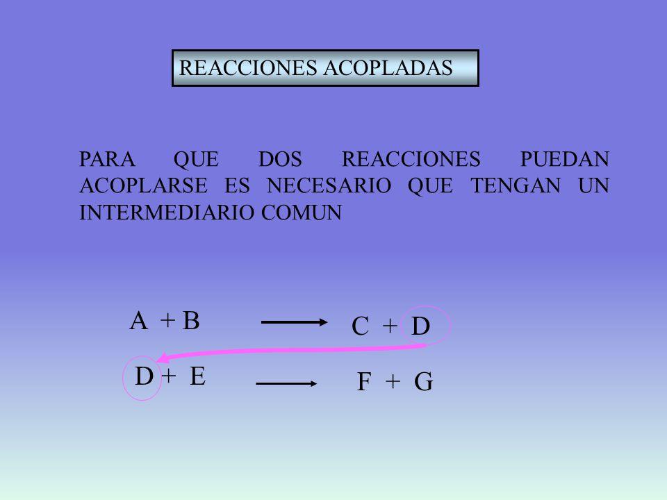 EJEMPLOFosforilación de la glucosa acoplada a la hidrólisis del ATP ATP + H 2 OADP + fosfato Glucosa + fosfatoGlucosa-6-P + H 2 O Elementos Una reacción que libere energía ( G<O) Una reacción que requiera energía ( G>O) Un intermediario común REACCION 1 REACCION 2 Gº´(kJ mol -1 ) -30,9 +16,7 ATP + glucosaGlucosa-6-P + ADP -14,2 REACCION 2 fosfato