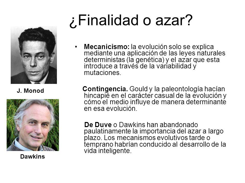 ¿Finalidad o azar? Mecanicismo: la evolución solo se explica mediante una aplicación de las leyes naturales deterministas (la genética) y el azar que