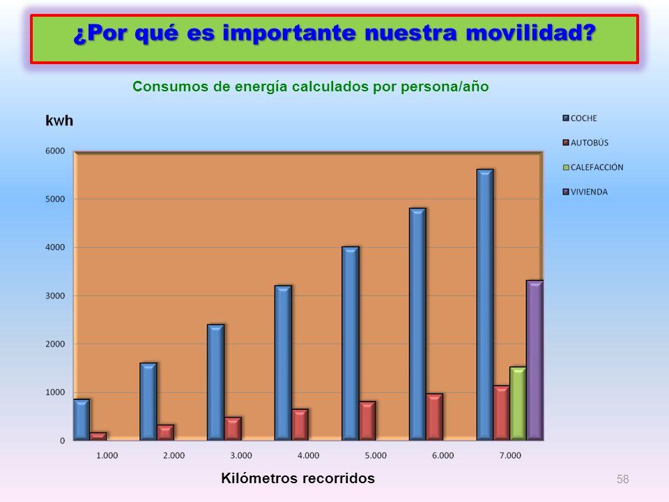 58 ¿Por qué es importante nuestra movilidad? Kilómetros recorridos Consumos de energía calculados por persona/año
