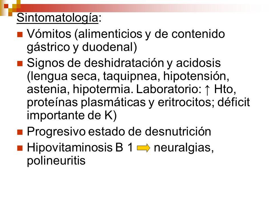 Sintomatología: Vómitos (alimenticios y de contenido gástrico y duodenal) Signos de deshidratación y acidosis (lengua seca, taquipnea, hipotensión, as