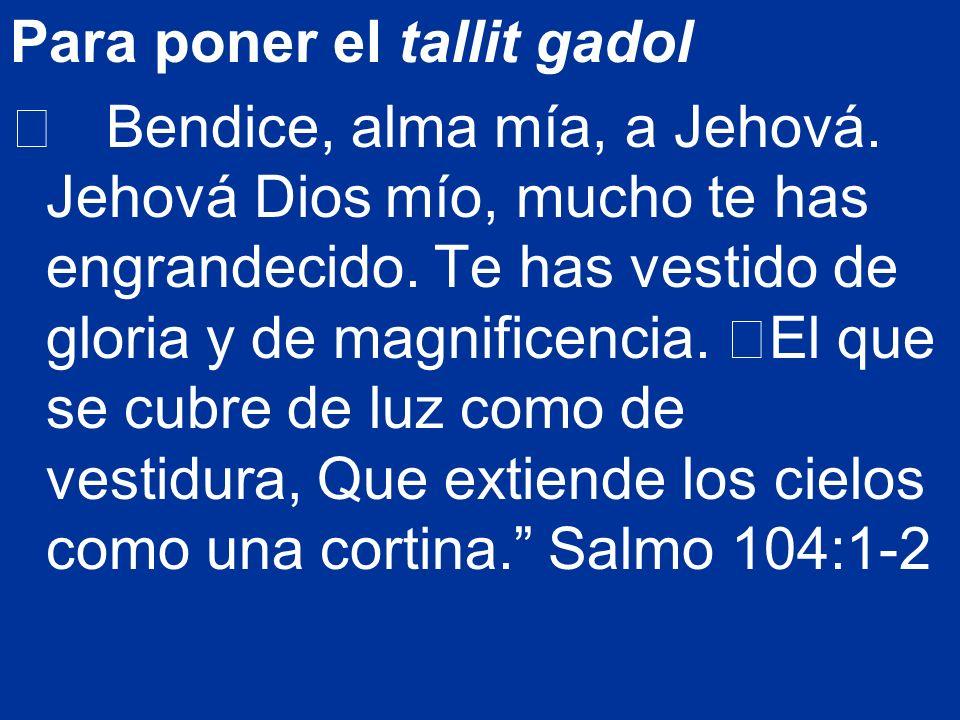 Para poner el tallit gadol Bendice, alma mía, a Jehová. Jehová Dios mío, mucho te has engrandecido. Te has vestido de gloria y de magnificencia. El qu
