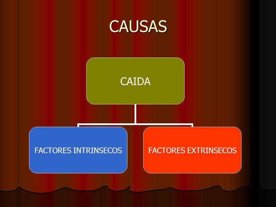 CAUSAS CAIDA FACTORES INTRINSECOS FACTORES EXTRINSECOS