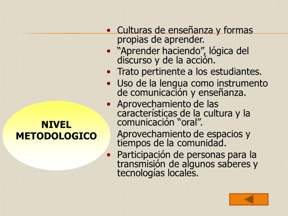Culturas de enseñanza y formas propias de aprender. Aprender haciendo, lógica del discurso y de la acción. Trato pertinente a los estudiantes. Uso de