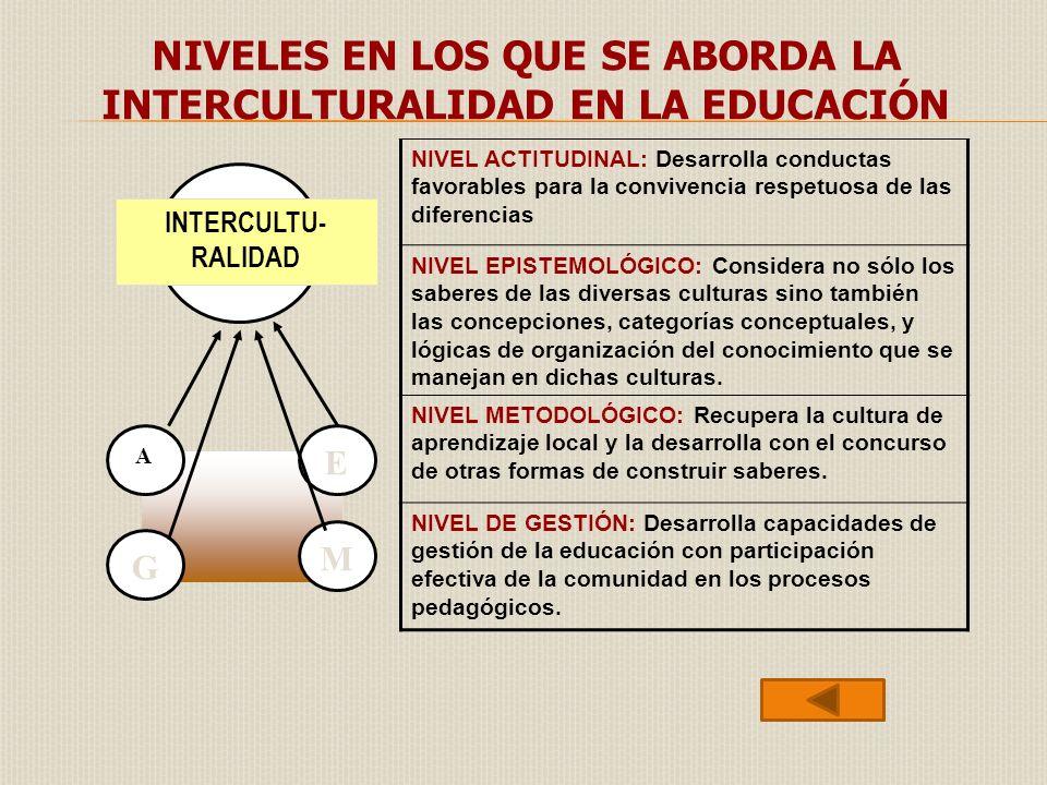 NIVEL ACTITUDINAL: Desarrolla conductas favorables para la convivencia respetuosa de las diferencias NIVEL EPISTEMOLÓGICO: Considera no sólo los saber