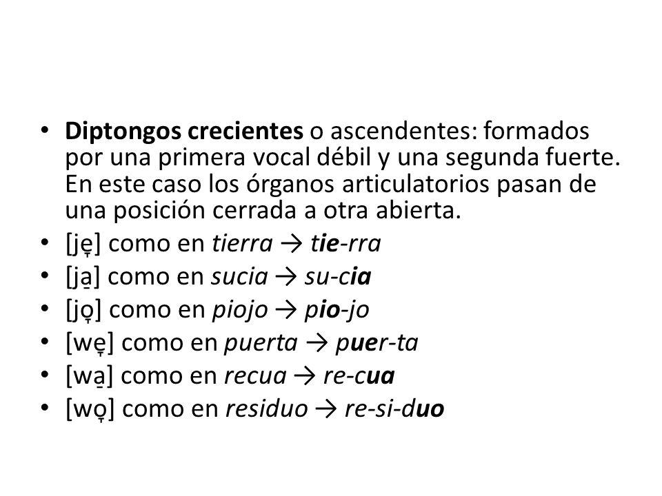 Diptongos crecientes o ascendentes: formados por una primera vocal débil y una segunda fuerte. En este caso los órganos articulatorios pasan de una po