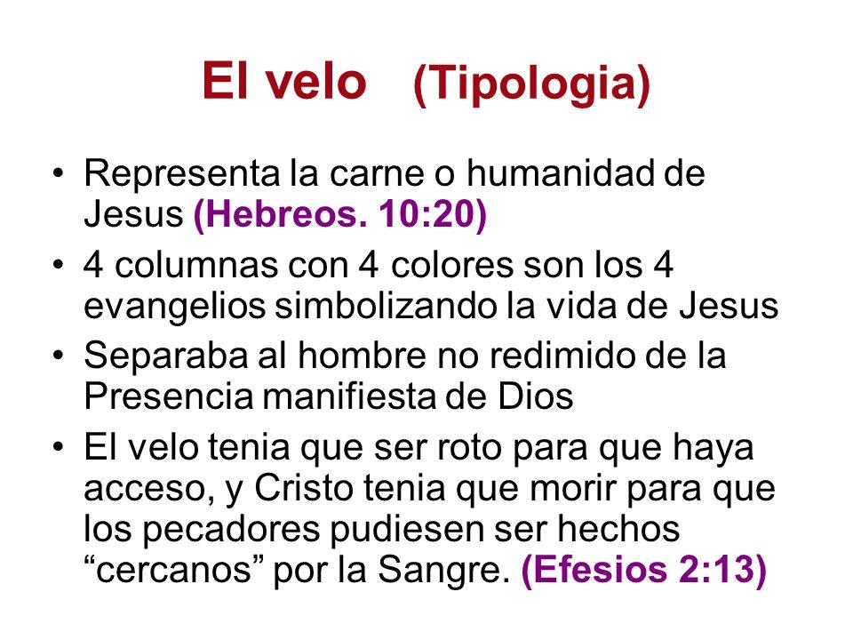 El velo (Tipologia) Representa la carne o humanidad de Jesus (Hebreos. 10:20) 4 columnas con 4 colores son los 4 evangelios simbolizando la vida de Je