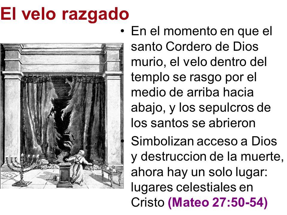 El velo razgado En el momento en que el santo Cordero de Dios murio, el velo dentro del templo se rasgo por el medio de arriba hacia abajo, y los sepu