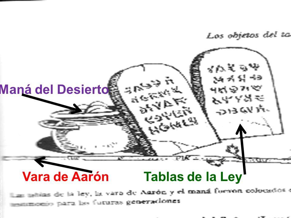Vara de Aarón Tablas de la Ley Maná del Desierto