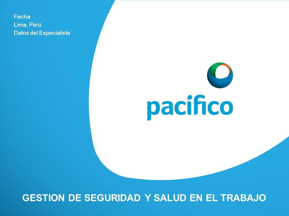 GESTION DE SEGURIDAD Y SALUD EN EL TRABAJO Fecha Lima, Perú Datos del Especialista