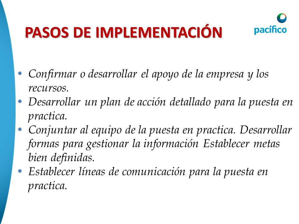 PASOS DE IMPLEMENTACIÓN Confirmar o desarrollar el apoyo de la empresa y los recursos. Desarrollar un plan de acción detallado para la puesta en pract