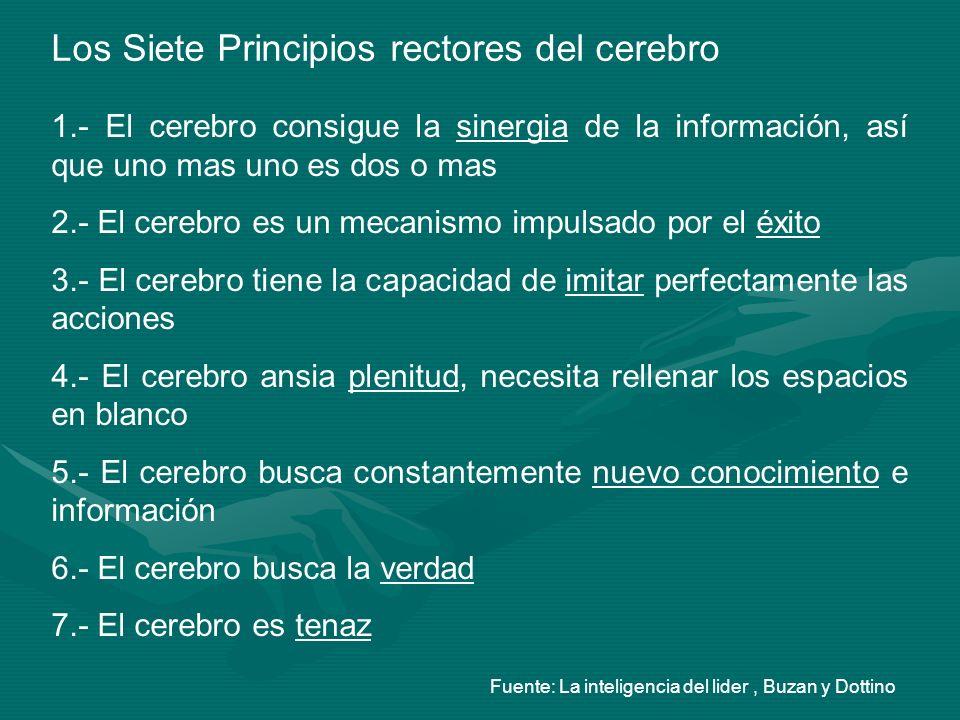Los Siete Principios rectores del cerebro 1.- El cerebro consigue la sinergia de la información, así que uno mas uno es dos o mas 2.- El cerebro es un