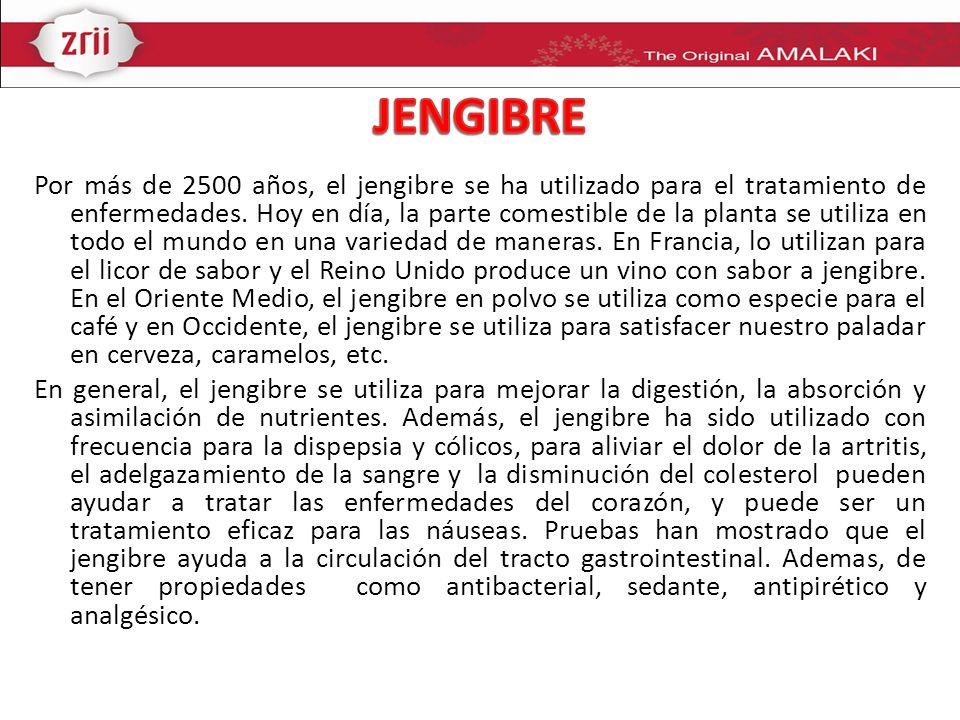 Por más de 2500 años, el jengibre se ha utilizado para el tratamiento de enfermedades. Hoy en día, la parte comestible de la planta se utiliza en todo