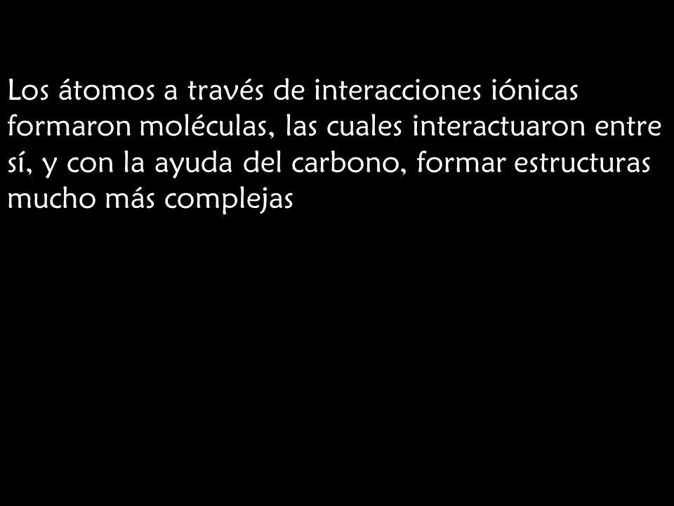 Los átomos a través de interacciones iónicas formaron moléculas, las cuales interactuaron entre sí, y con la ayuda del carbono, formar estructuras muc