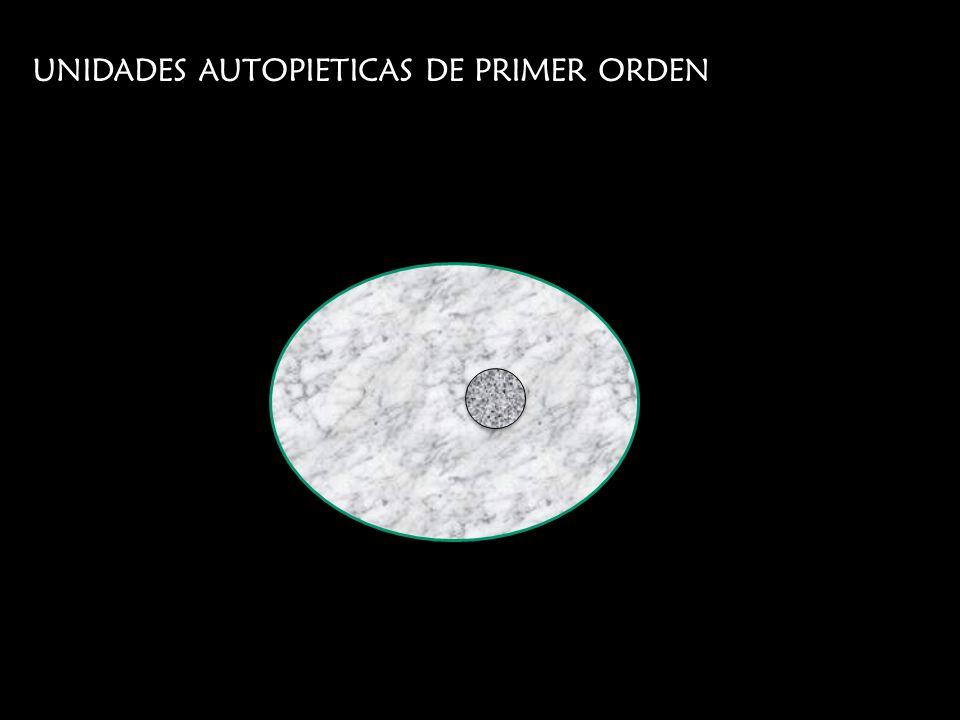 UNIDADES AUTOPIETICAS DE PRIMER ORDEN