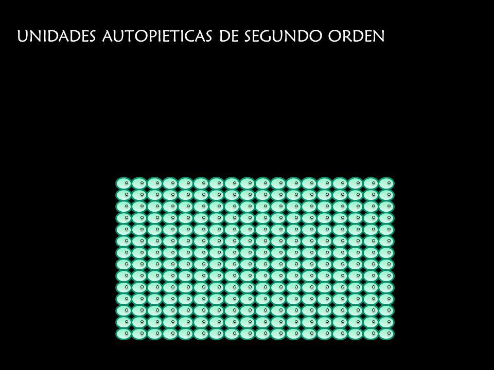 UNIDADES AUTOPIETICAS DE SEGUNDO ORDEN