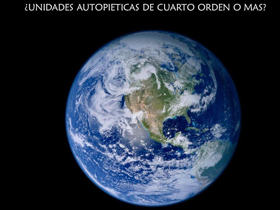 ¿UNIDADES AUTOPIETICAS DE CUARTO ORDEN O MAS?