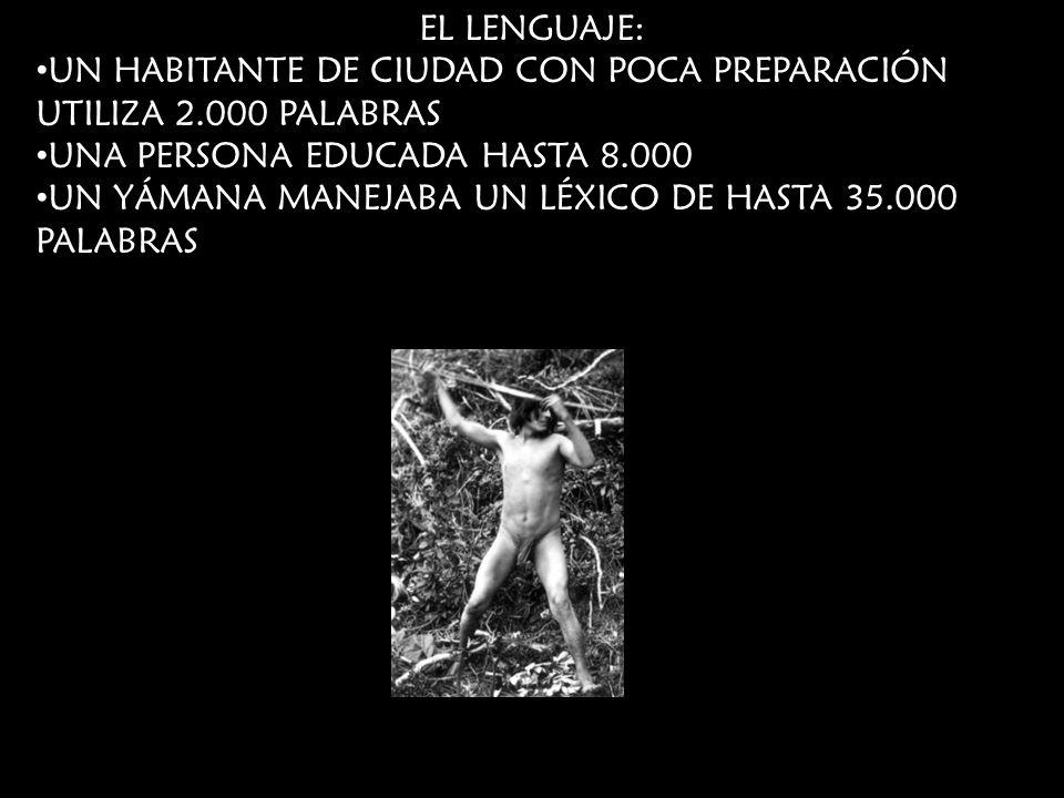 EL LENGUAJE: UN HABITANTE DE CIUDAD CON POCA PREPARACIÓN UTILIZA 2.000 PALABRAS UNA PERSONA EDUCADA HASTA 8.000 UN YÁMANA MANEJABA UN LÉXICO DE HASTA