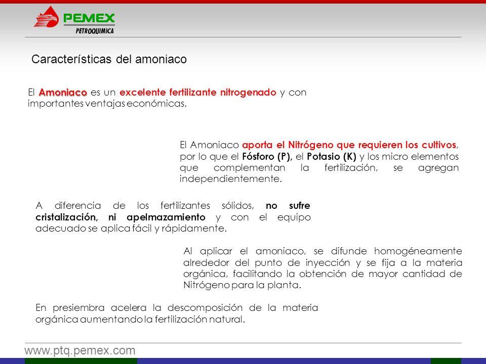 www.ptq.pemex.com Amoniaco El Amoniaco es un excelente fertilizante nitrogenado y con importantes ventajas económicas. El Amoniaco aporta el Nitrógeno