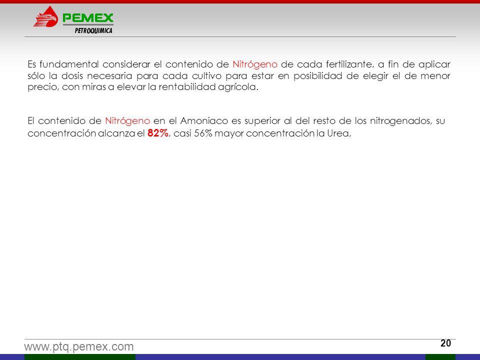 www.ptq.pemex.com El contenido de Nitrógeno en el Amoniaco es superior al del resto de los nitrogenados, su concentración alcanza el 82%, casi 56% may