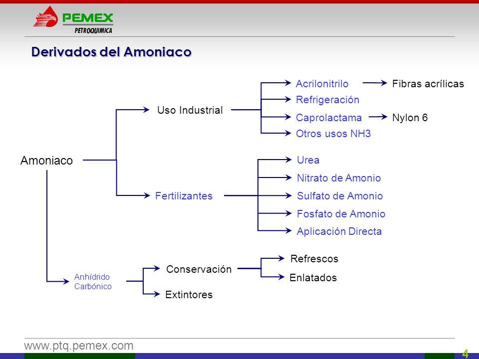 www.ptq.pemex.com 4 Derivados del Amoniaco Amoniaco Anhídrido Carbónico Fertilizantes Uso Industrial Urea Nitrato de Amonio Sulfato de Amonio Fosfato