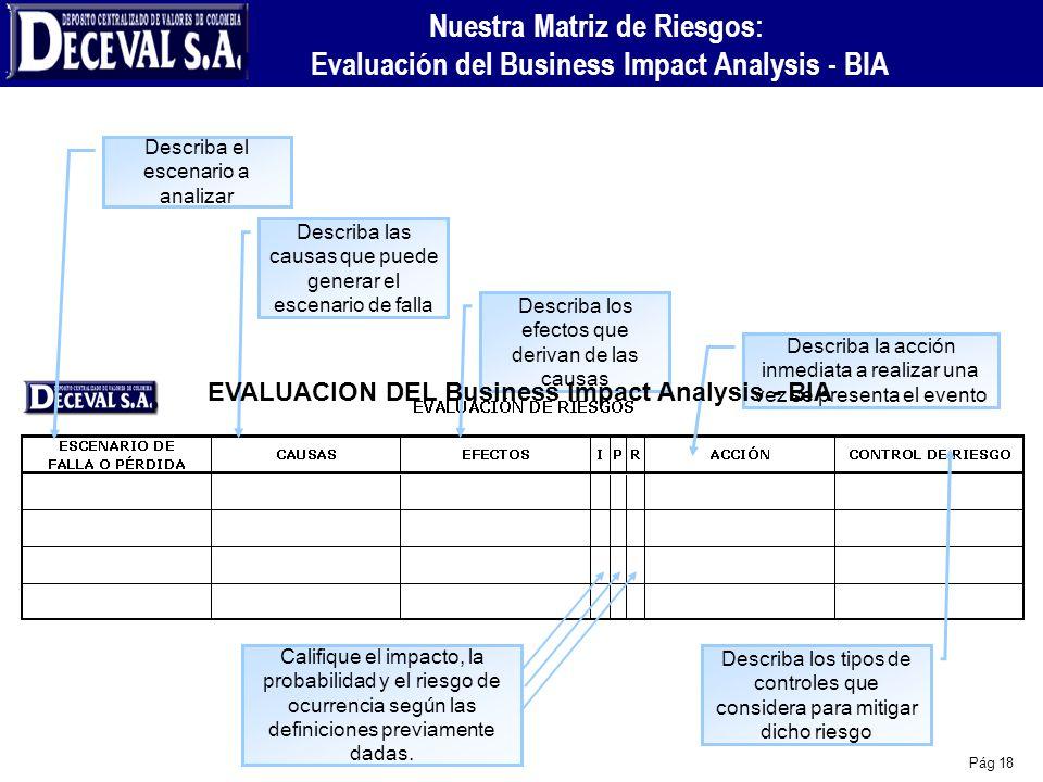 Pág 18 Nuestra Matriz de Riesgos: Evaluación del Business Impact Analysis - BIA Describa el escenario a analizar Describa las causas que puede generar