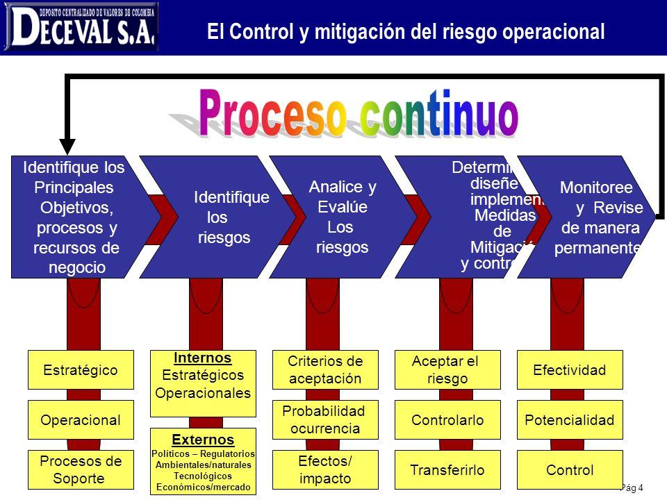 Pág 4 Estratégico Operacional Procesos de Soporte Internos Estratégicos Operacionales Criterios de aceptación Probabilidad ocurrencia Efectos/ impacto