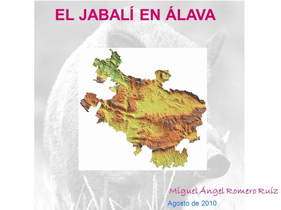 EL JABALÍ EN ÁLAVA Miguel Ángel Romero Ruíz Agosto de 2010