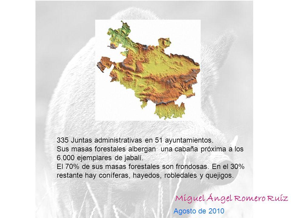 Miguel Ángel Romero Ruíz Agosto de 2010 335 Juntas administrativas en 51 ayuntamientos.