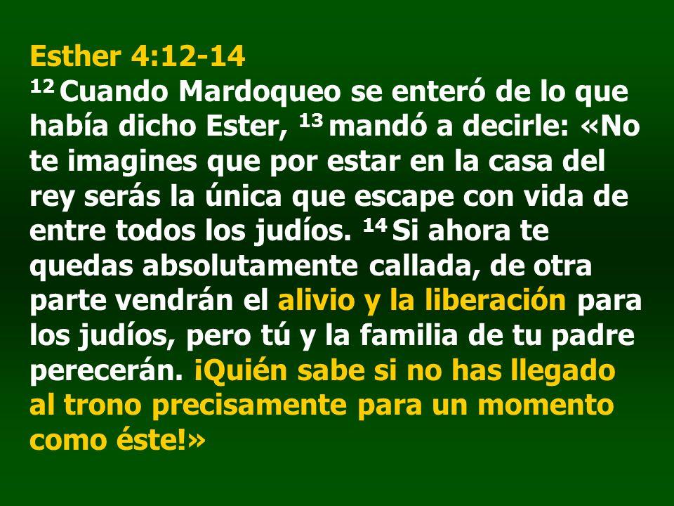 Esther 4:12-14 12 Cuando Mardoqueo se enteró de lo que había dicho Ester, 13 mandó a decirle: «No te imagines que por estar en la casa del rey serás l