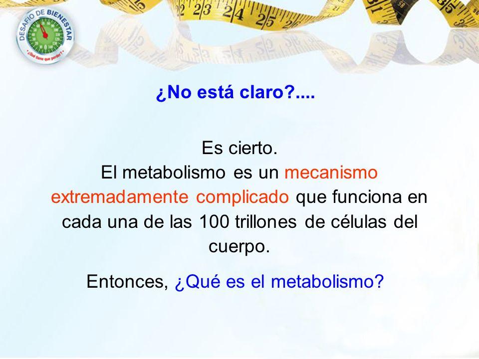 ¿No está claro?.... Es cierto. El metabolismo es un mecanismo extremadamente complicado que funciona en cada una de las 100 trillones de células del c