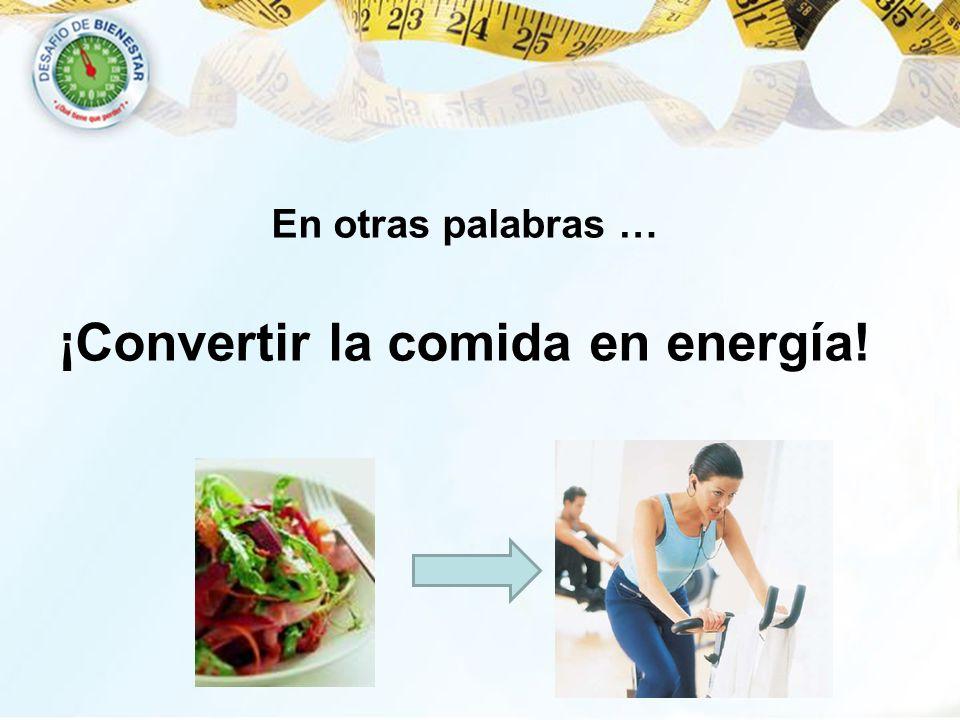 En otras palabras … ¡Convertir la comida en energía!