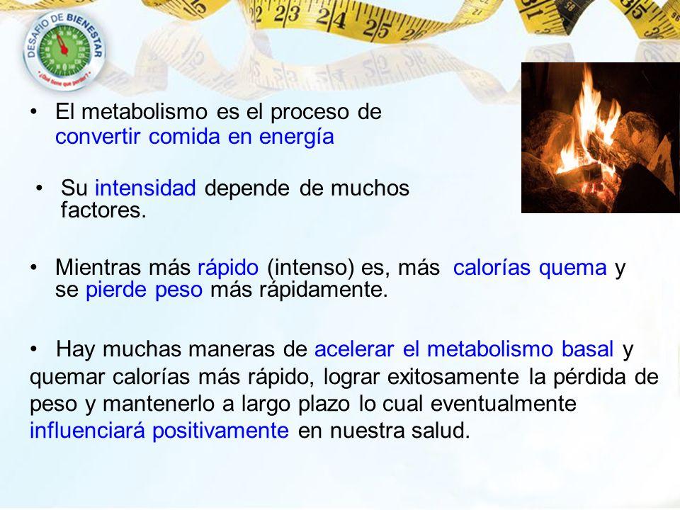 El metabolismo es el proceso de convertir comida en energía Su intensidad depende de muchos factores. Mientras más rápido (intenso) es, más calorías q