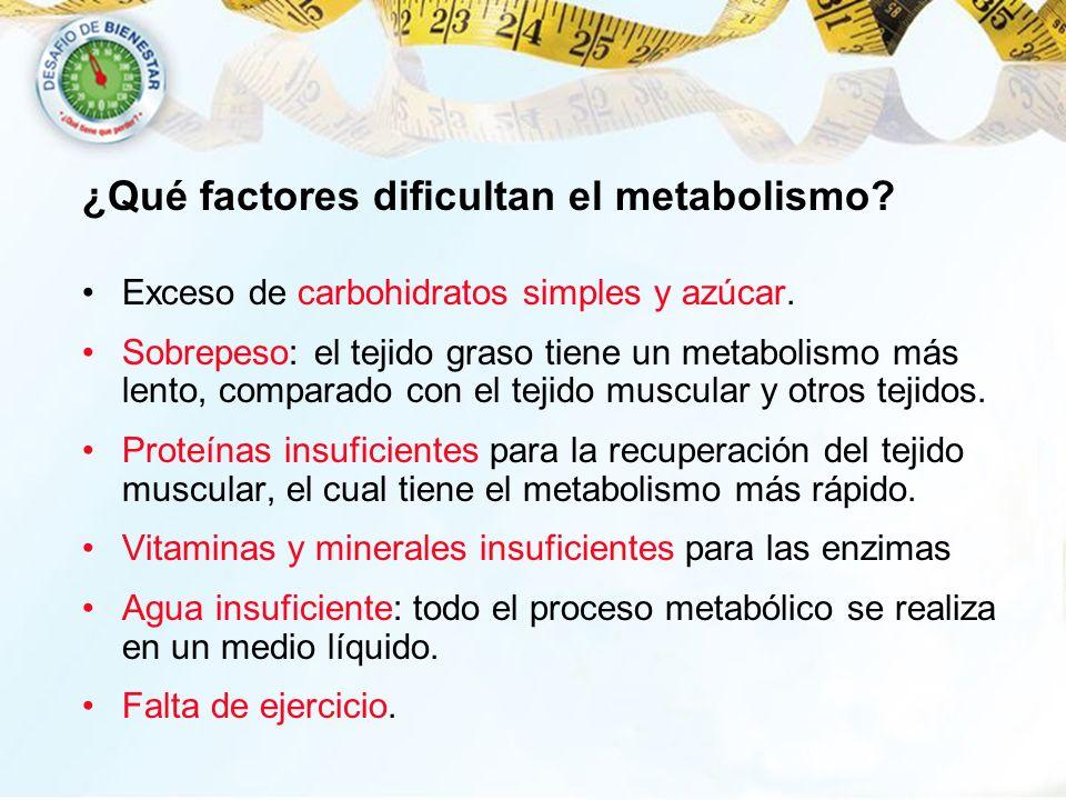¿Qué factores dificultan el metabolismo? Exceso de carbohidratos simples y azúcar. Sobrepeso: el tejido graso tiene un metabolismo más lento, comparad