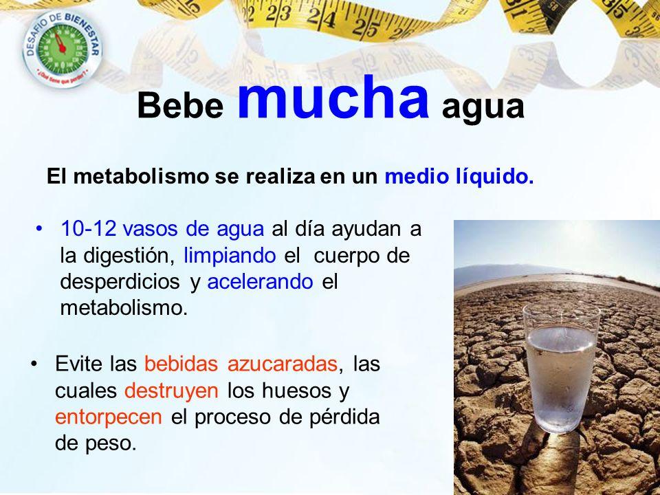 Bebe mucha agua El metabolismo se realiza en un medio líquido. 10-12 vasos de agua al día ayudan a la digestión, limpiando el cuerpo de desperdicios y