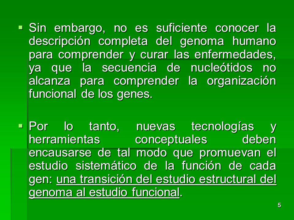 5 Sin embargo, no es suficiente conocer la descripción completa del genoma humano para comprender y curar las enfermedades, ya que la secuencia de nuc