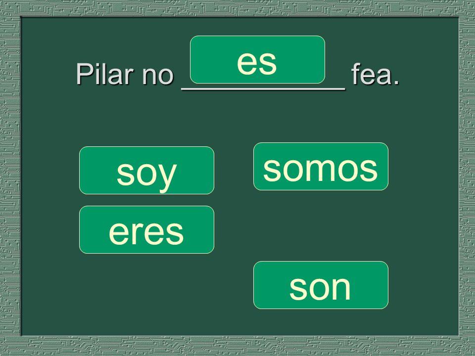 Pilar no __________ fea. somos son soy eres es