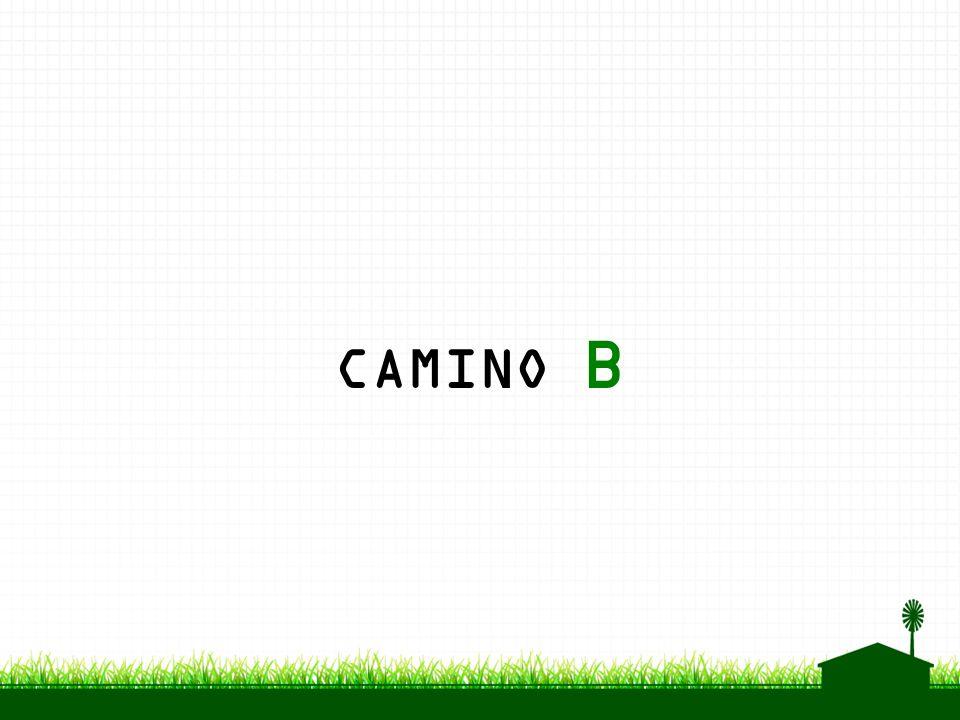 CAMINO B
