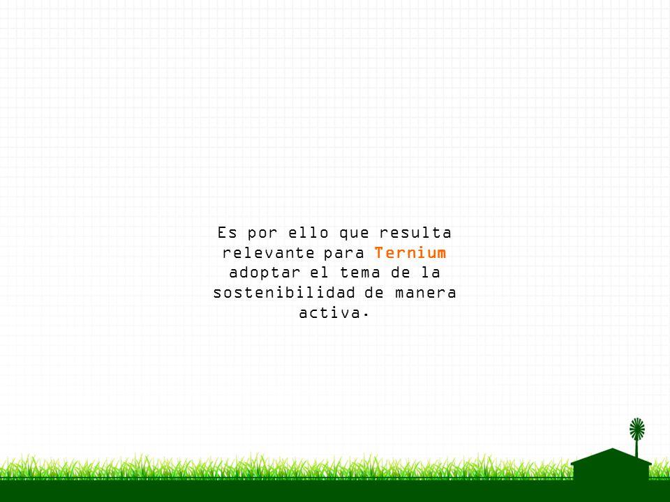 Es por ello que resulta relevante para Ternium adoptar el tema de la sostenibilidad de manera activa.