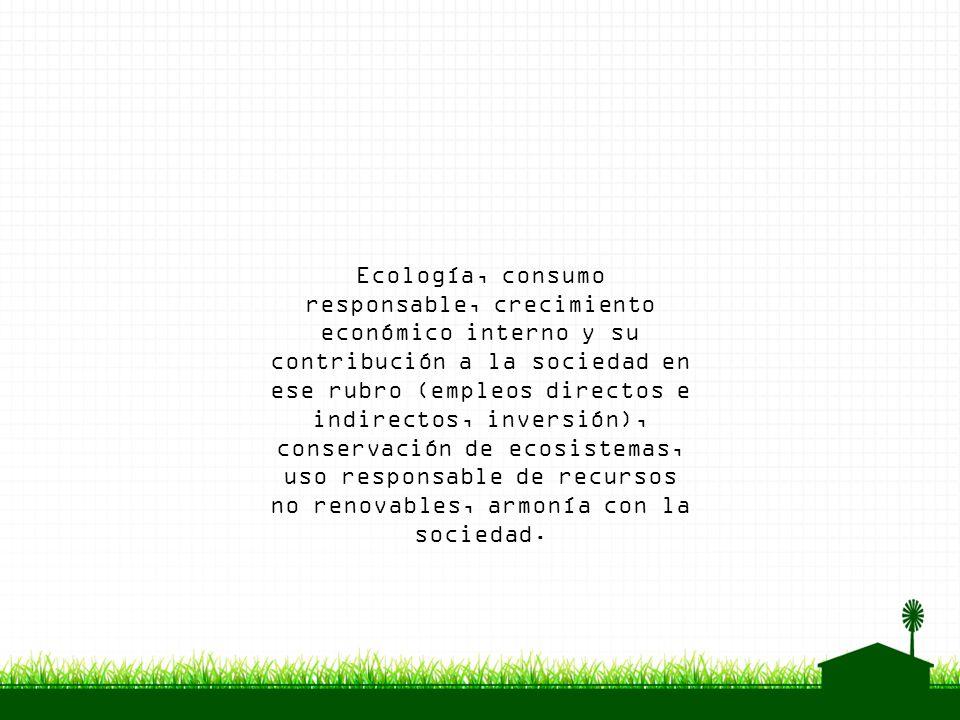 Ecología, consumo responsable, crecimiento económico interno y su contribución a la sociedad en ese rubro (empleos directos e indirectos, inversión), conservación de ecosistemas, uso responsable de recursos no renovables, armonía con la sociedad.