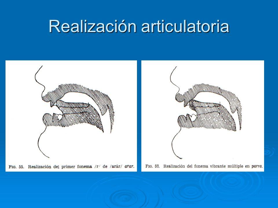 Articulación de los sonidos Vibración de las cuerdas vocales Vibración de las cuerdas vocales Modo de articulación: es aquí donde se diferencian los dos sonidos.